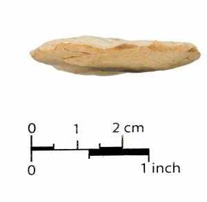 14 (base)