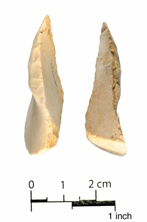 17 (edges)