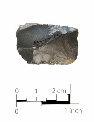 443 (side b)
