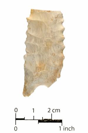 248 (side b)