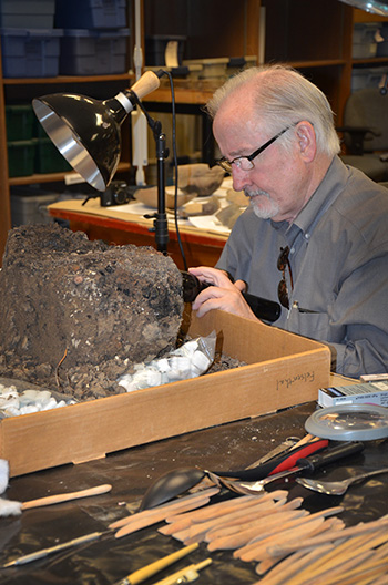 Dr. David Stahle (Professor of Geosciences, University of Arkansas) examines a charred post removed from the top of the mound at the Parkin site to see if it can be dated by tree-ring analysis. The post is thought to represent a cross that was erected on the mound by Hernando de Soto's men in 1541.