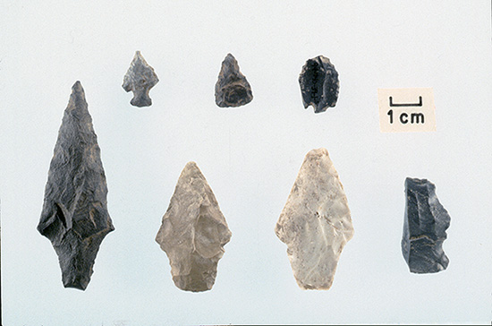 Projectile points from the Open Shelter, Spradley Hollow.