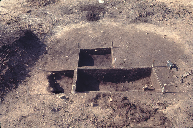 Feature 2, a 3-meter diameter section of dark soil with the Survey's excavation units laid out (facing north).