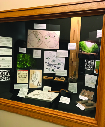 "Part of an exhibit at the State Capitol put together by our ""Gathering, Gardening, and Agriculture"" team in cooperation with David Ware, Capitol Historian."