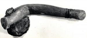 beaver pond ax 1