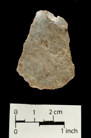 493 (side b)