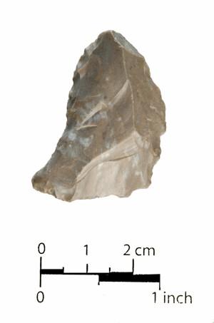 446 (side b)