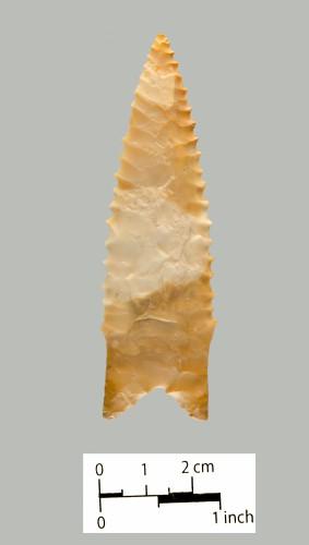 207 (side b)
