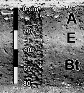 A Handbook of Soil Description for Archeologists by Gregory Vogel