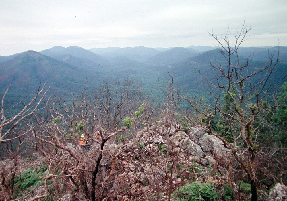Ancient novaculite quarry sites are still preserved and protected on public lands in the Ouachita National Forest, Hot Springs National Park, and Lake Catherine State Park.
