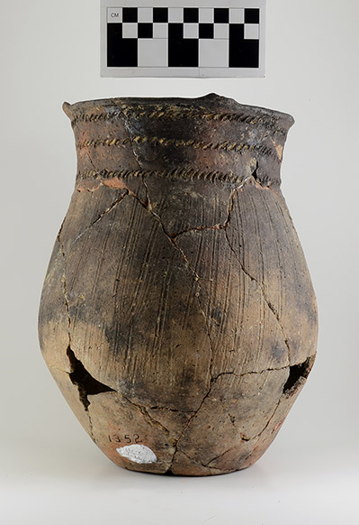 Shell-tempered jar (77-1/X-137, unknown provenience).
