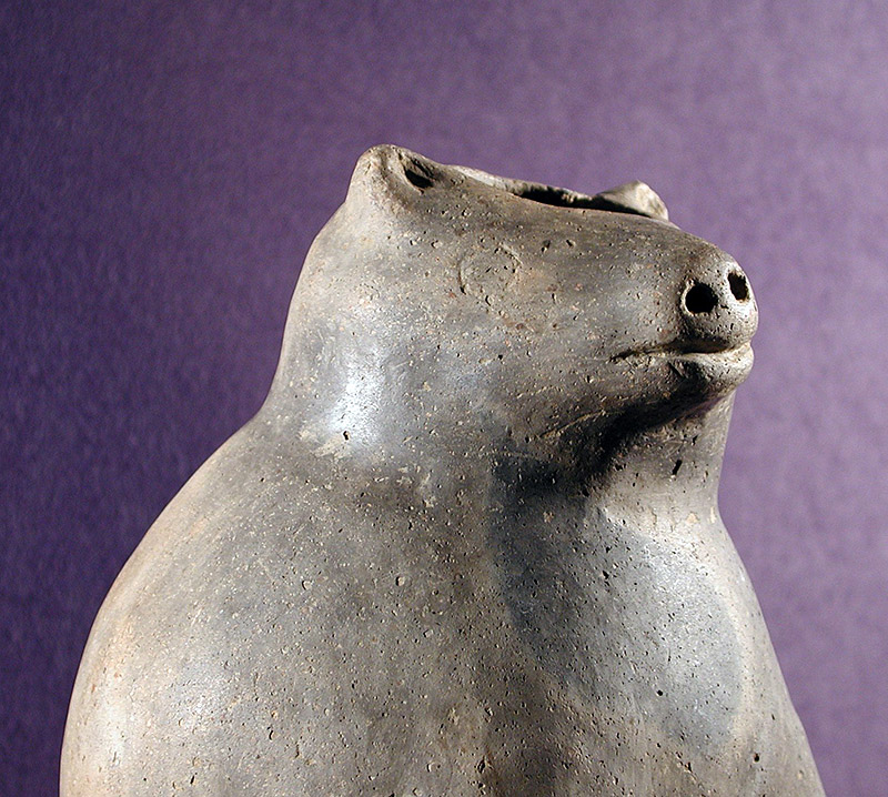Detail of a bear effigy bottle collected by Thomas and Charlotte Hodges (77-1/X-36, unknown provenience).