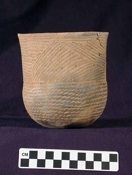 "Sinner Linear-Punctated jar (77-1/X-272, unknown provenience). This is the ""type vessel"" for the Cambridge 28 rim design in the descriptive system."