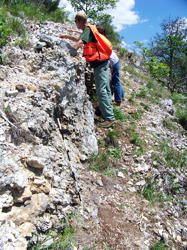Raymond McGrath (Ouachita National Forest) examines a quarried novaculite outcrop.