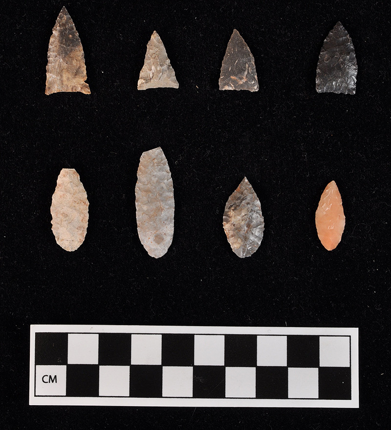 Madison arrow points, top row; Nodena arrow points, bottom row; all found on the floor of House 2.