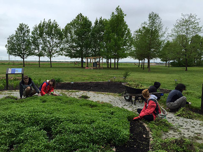 Botany and archeology students from the University of Arkansas at Monticello gained experience by working in the Plum Bayou Garden at the Survey's Toltec Mounds Research Station.