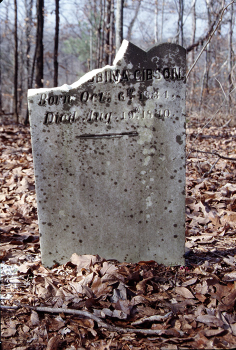 The Arkansas Archeological Survey worked with the county sheriff after vandalism to grave markers was reported at this cemetery in 2002.