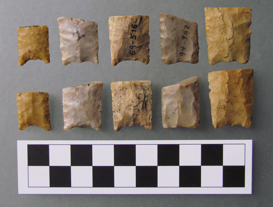 Figure 3. Both sides of Arkansas PFTAS in the collection of ARAS-ASU (Arkansas Paleoindian Database Nos. Left to Right: ARAS-129, ARAS-183, ARAS-132, ARAS-147, ARAS-34.