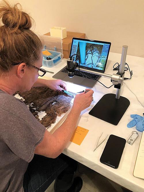Figure 1. Dr. Horton analyzing textiles.