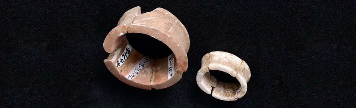 Earspools made from stone and animal bone from the Standridge site in Arkansas.
