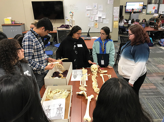 Mel Zabecki (ARAS Educational Outreach Coordinator) visits Don Tyson School of Innovation in Springdale to teach about human osteology.